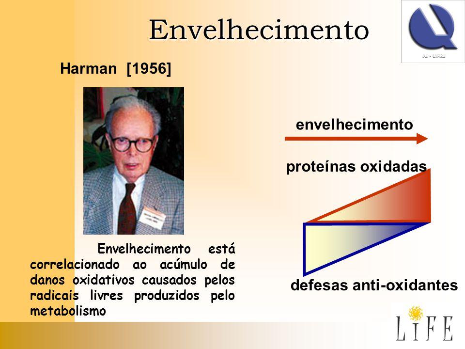 Envelhecimento Harman [1956] envelhecimento proteínas oxidadas